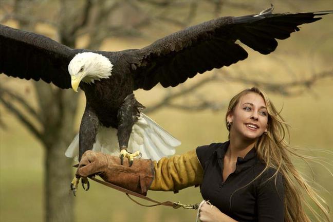 eagle_handler-2.jpg